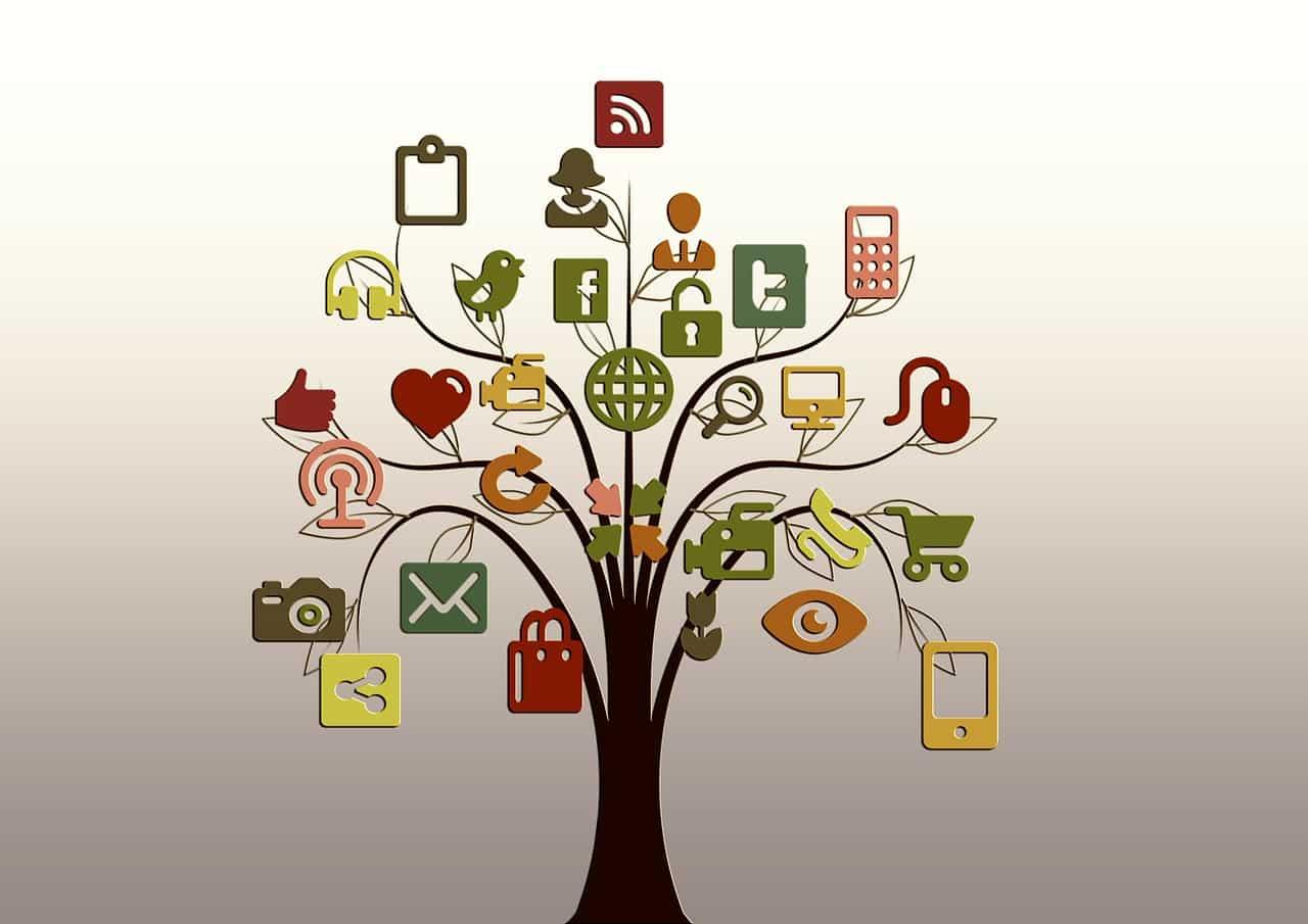 Een boomstam met aan de uiteinden vele mogelijkheden qua website analyse. De boomstam staat hier voor de website
